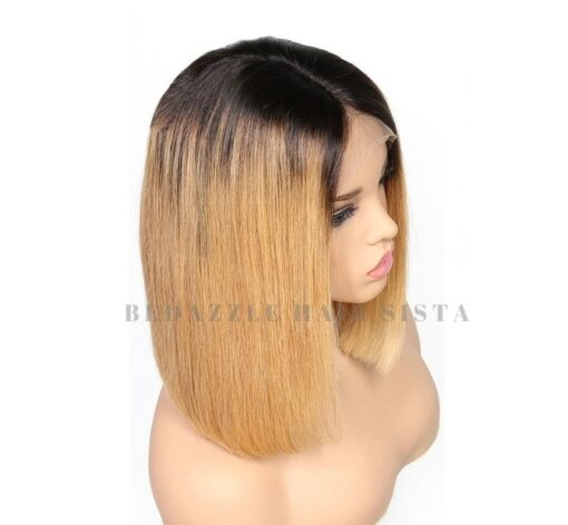 Wig - Ombre Straight